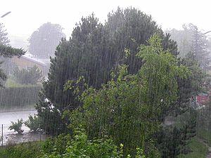 300px-22_Regen_ubt wikipedia regn